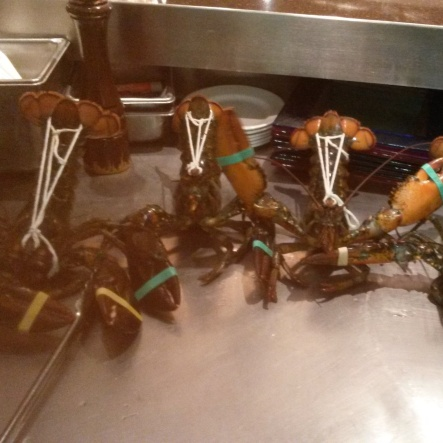 Lobsters sharing in bad Holiday luck